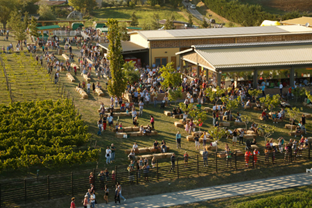 rural-festival2